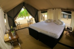 jungle-safari-tent-semi-deluxe4