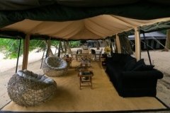 jungle-safari-tent-semi-deluxe7