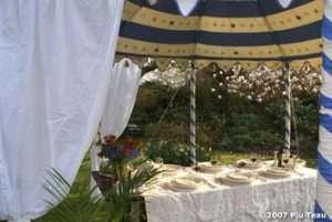 indian pavilion tents 3