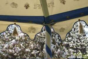 indian pavilion tents 6