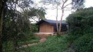 jungle safari tent semi deluxe2
