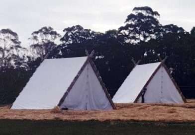 viking period tents