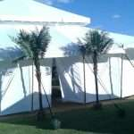 Luxury indian mughal tent for sale